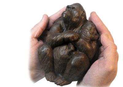 Gorille-femelle-portant-son-petit-vue-04