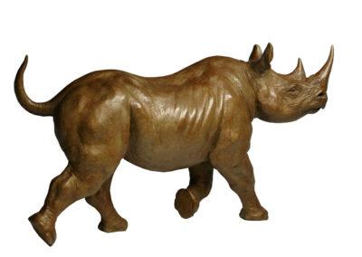 Rhino-noir-femelle-au-trot-vue-01