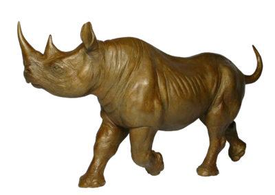 Rhino-noir-femelle-au-trot-vue-03