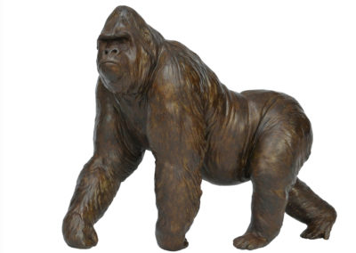 Grand gorille mâle en marche