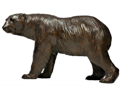 Grand-ours-polaire-tête-tournée-vue-01