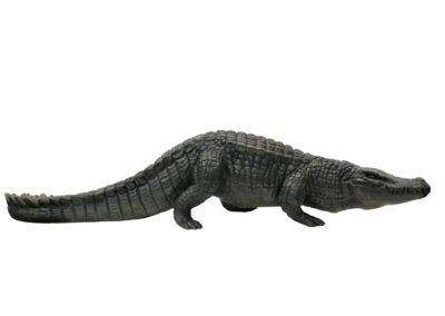 Crocodile du Nil en marche – Agrandissement